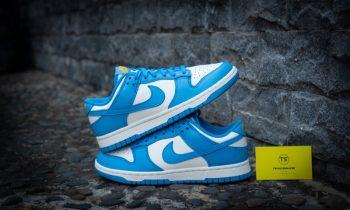 Giày Nike Dunk Low Coast UNC DD1503-100